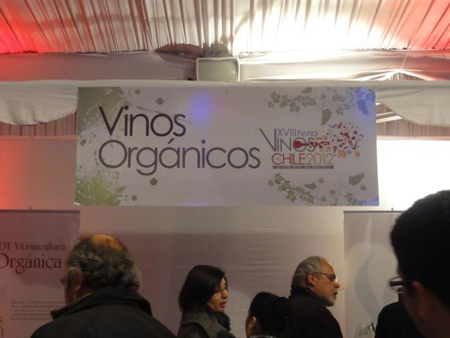 Chile_03a.jpg